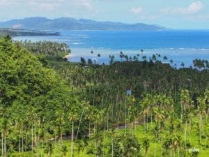 View from a hike on the Island of Taveuni